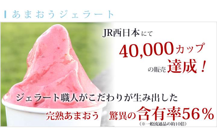 JR西日本にて40,000カップ販売達成!ジェラート職人がこだわりが生み出した完熟あまおう 驚異の含有率56%あまおうジェラート。